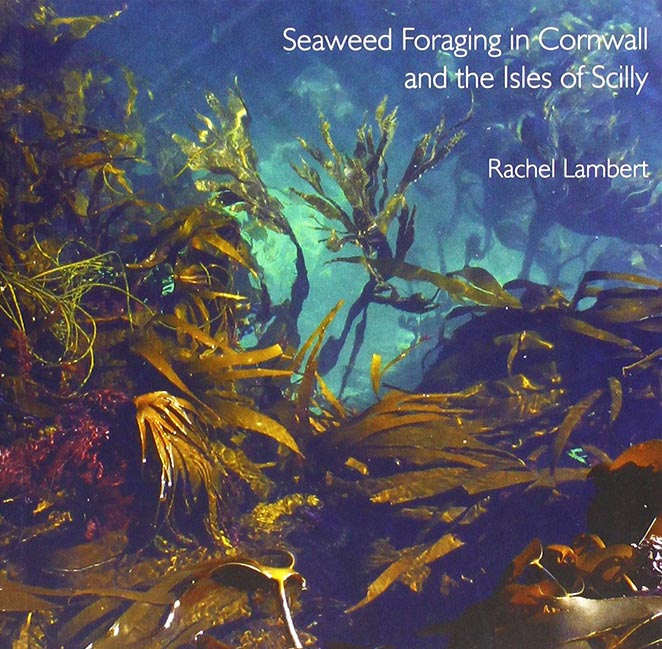 Foraging guide for edible seaweeds