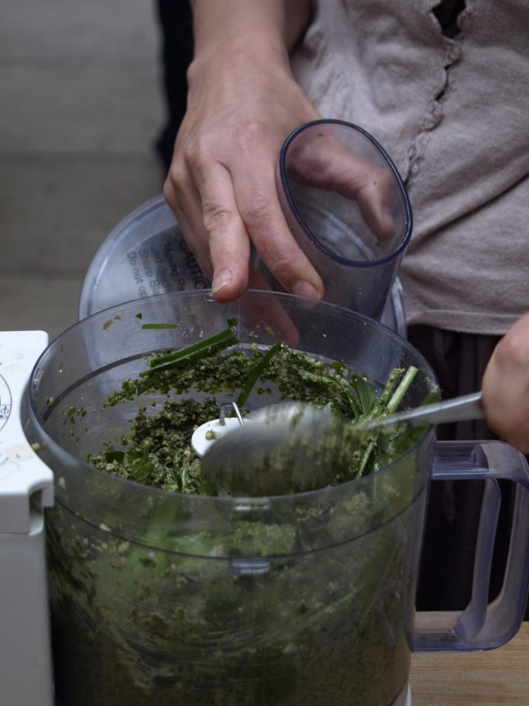 Learn about wild spring greens on a foraging course in Cornwall