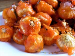 Foraged balls of rosehip seeds