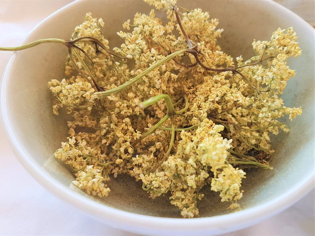 Bowl of dried elderflowers for herbal tea
