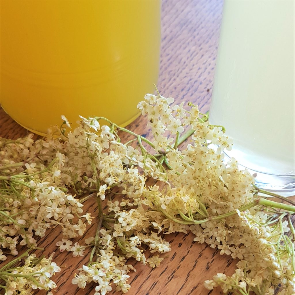 Elderflower, lemon and orange cordial