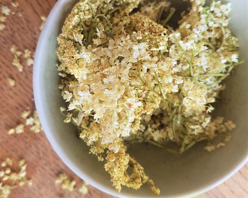 Bowl of elderflowers