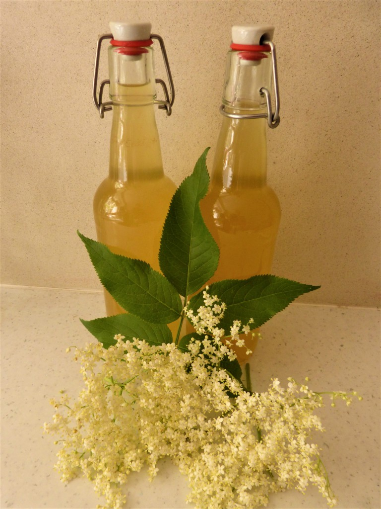Elderflower Cordial and  Elderflower Sorbet Recipes