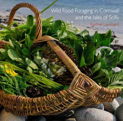 Wild Food Foraging book cover