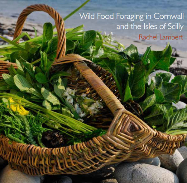 wild food foraging book