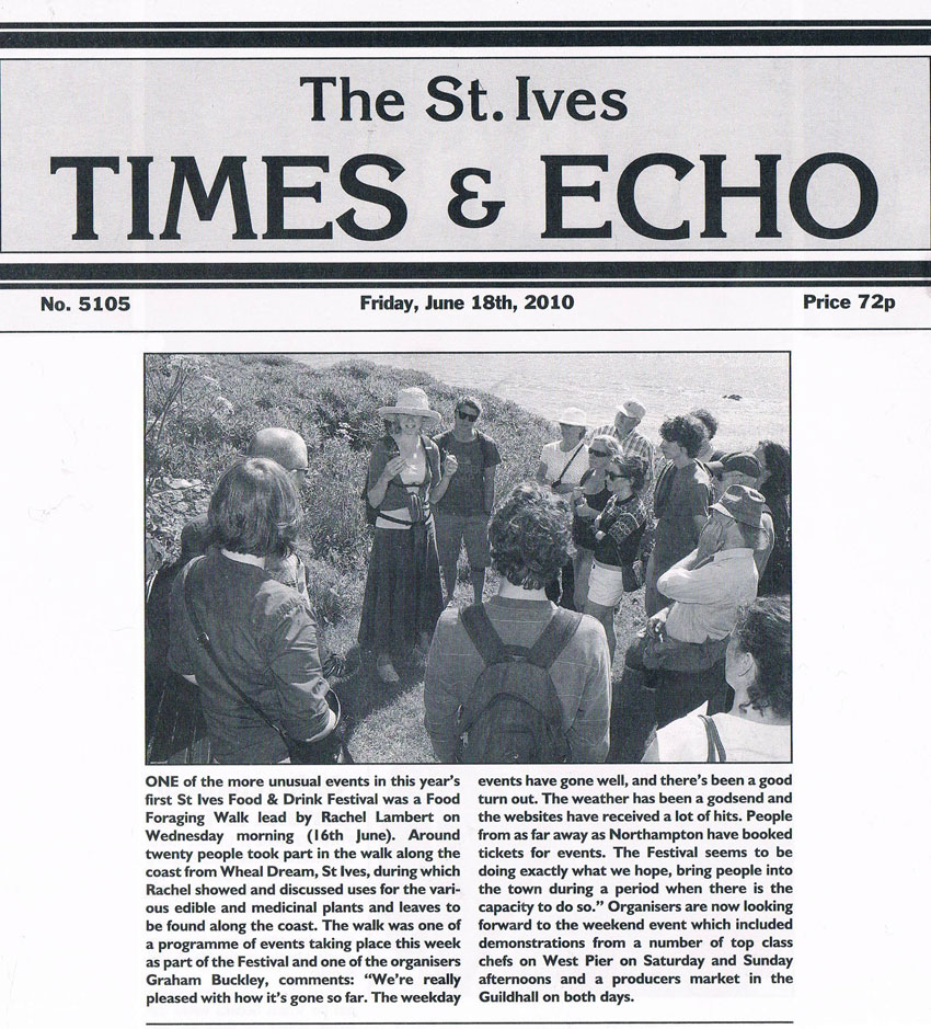 St Ives Times & Echo, June 2010