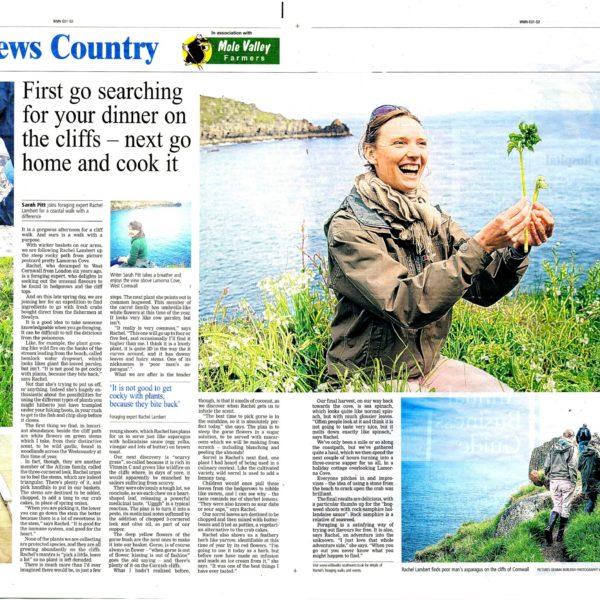 Western Morning News, July 2013