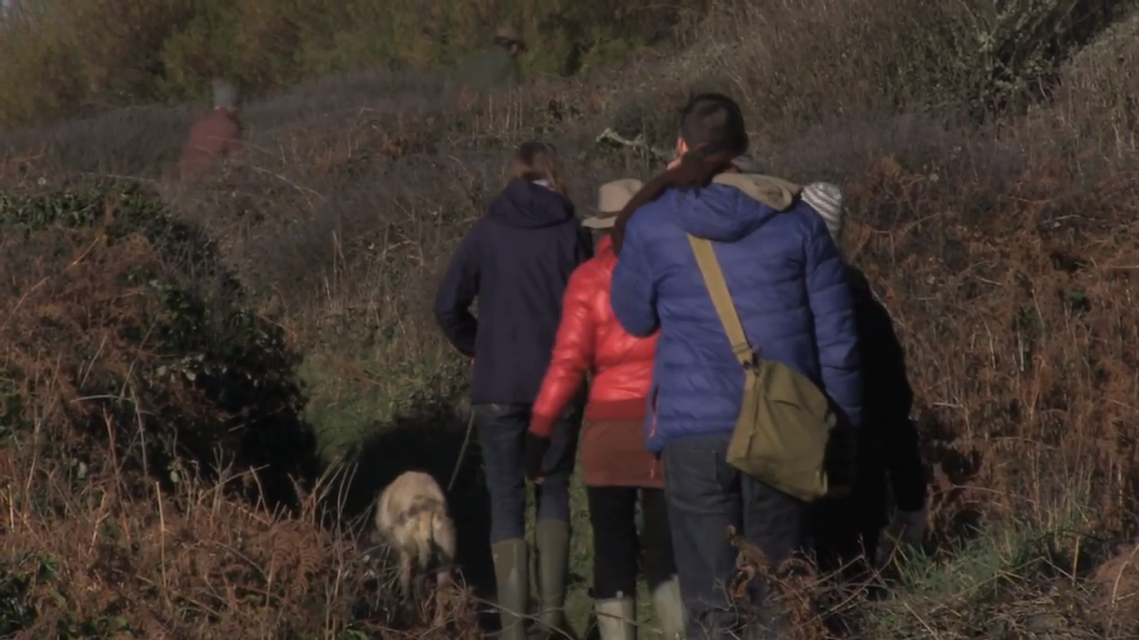 Leading a foraging course in Cornwall