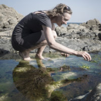 Rachel Lambert foraging seaweeds for food