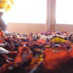 Drying Dulse Seaweed at Home