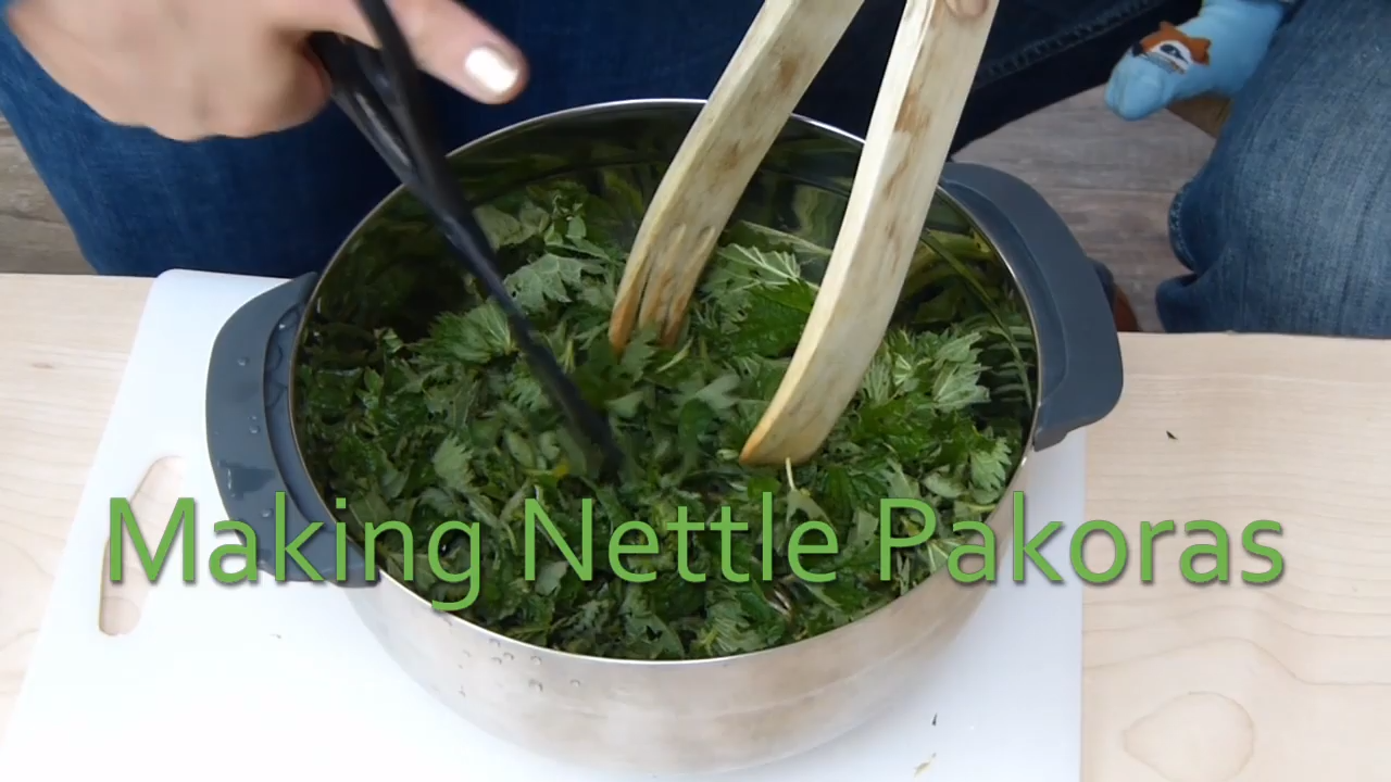 Making Nettle Pakoras (with Nettle Song)