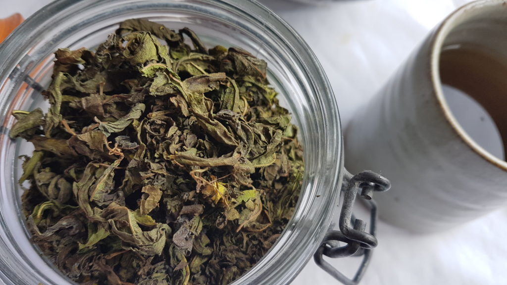 A close up of Ivan tea showing the dried fermented wild tea