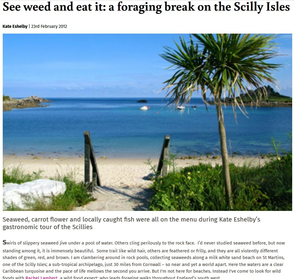 See weed and eat it: a foraging break on the Scilly Isles
