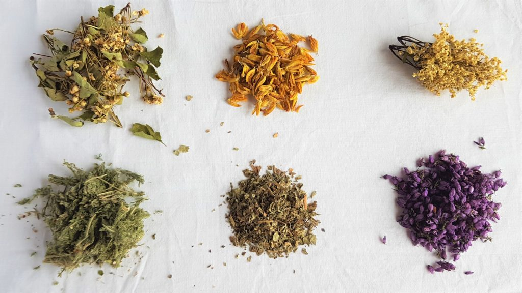 Six local herbs from my tea cupboard