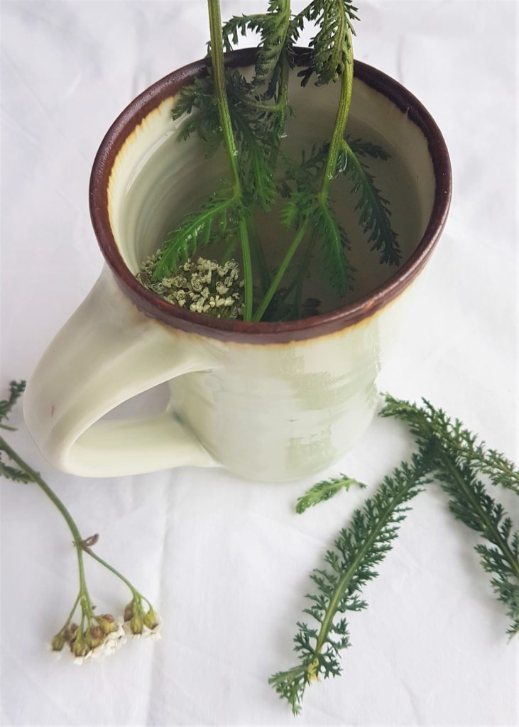 Mug of yarrow herb tea