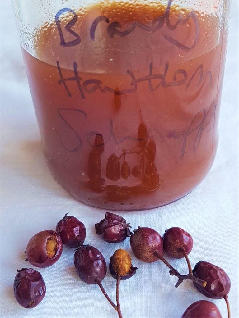 Hawthorn Schnapps, bottled