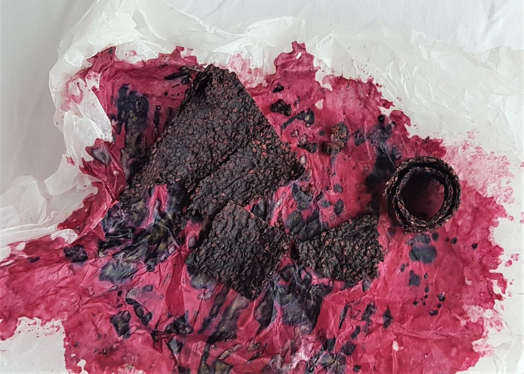 Dried blackberry seeded pulp on blackberry stained paper