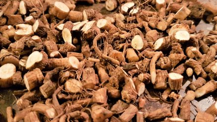 Chopped dandelion root ready for roasting