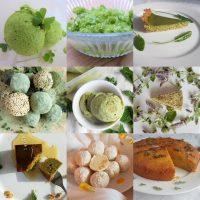 sweet wilds made by forager Rachel Lambert