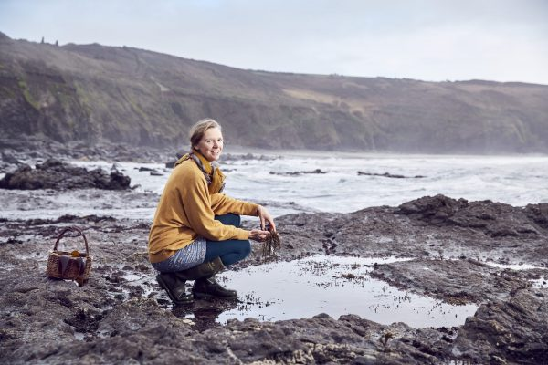 Forager by the winter rockpools