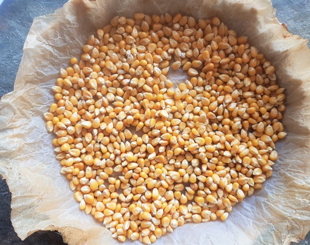 This image has an empty alt attribute; its file name is I-use-dried-popping-corn-instead-of-baking-beans-1024x809.jpg
