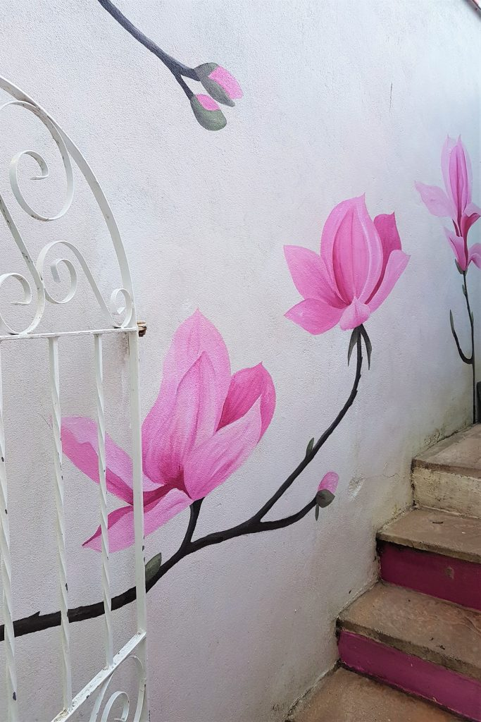 Painted magnolias in Cornwall