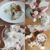 Making cherry blossom syrup and pancakes