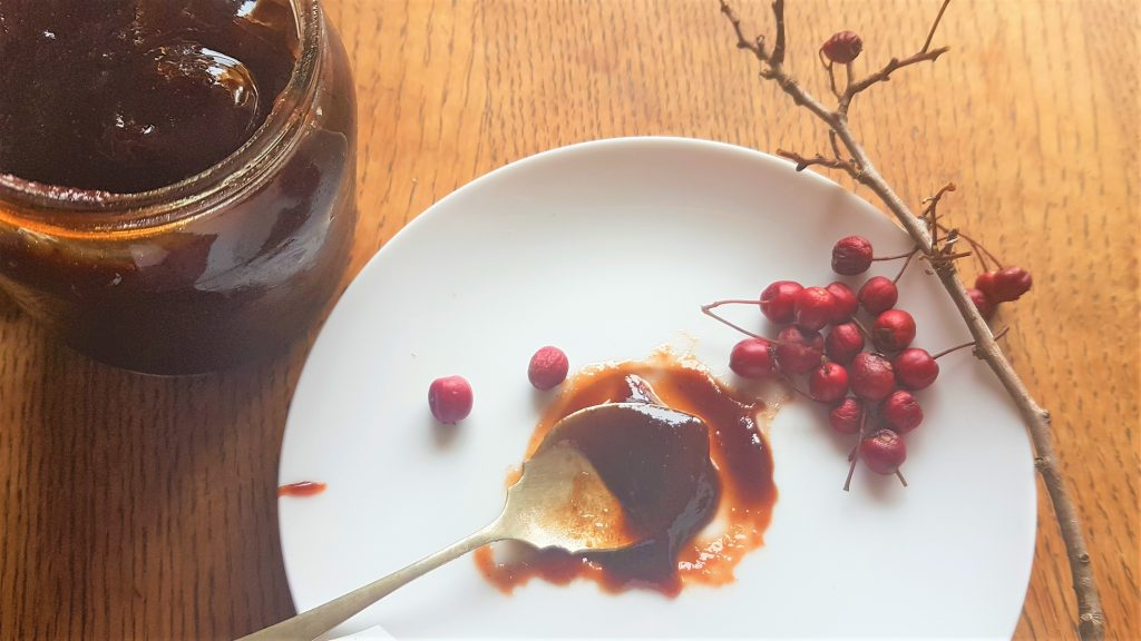 Spoon of hawthorn jam, berries on saucer