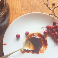 Spoon of hawthorn jam, berries on saucer foraged on a wild food course