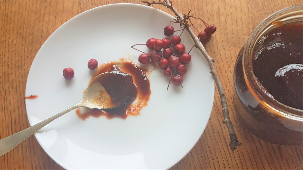 Twig of haw berries with spoonful of haw berry jam from a foraging course