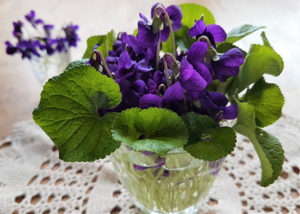 A homemade posy of violets from a foraging course in Cornwall