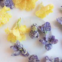 Crystallised primroses and violets for a wild, foraged dessert