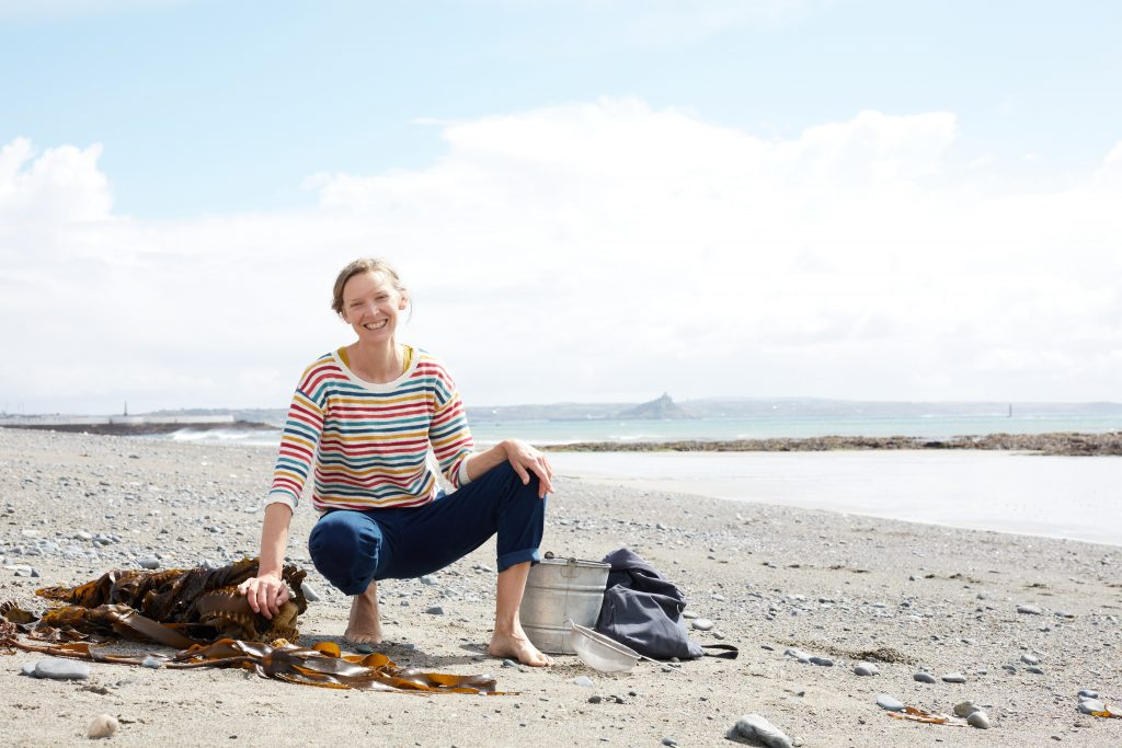 What to find along the seashore in Cornwall