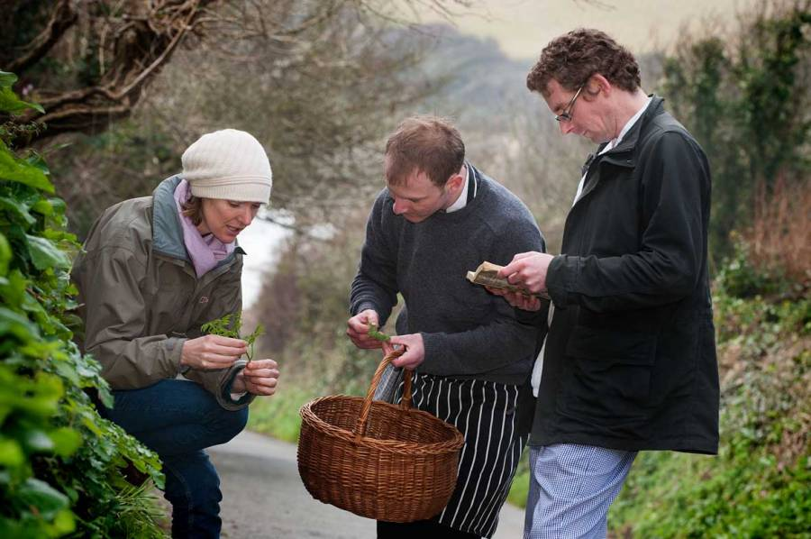 Teaching chefs about foraging in Cornwall